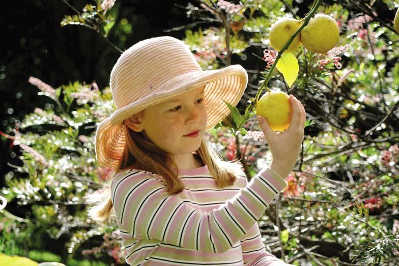Granite Belt with kids picking fruit