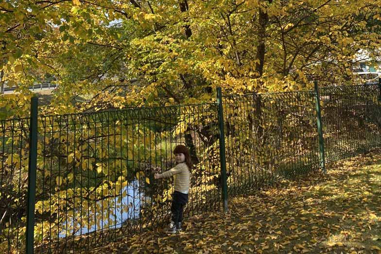 Angus Alexandra park