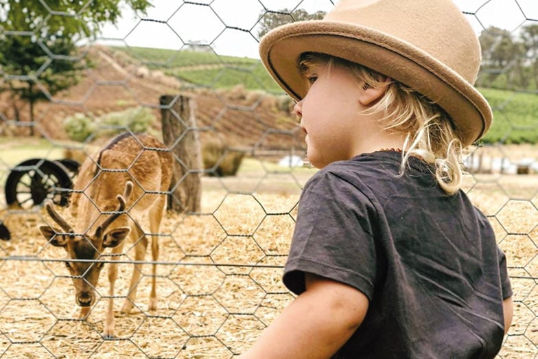 Family friendly winery Barristers Block. Image Carissa Wright