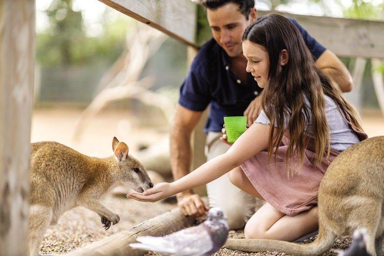 Featherdale Wildlife Park at Doonside. Image Destination NSW