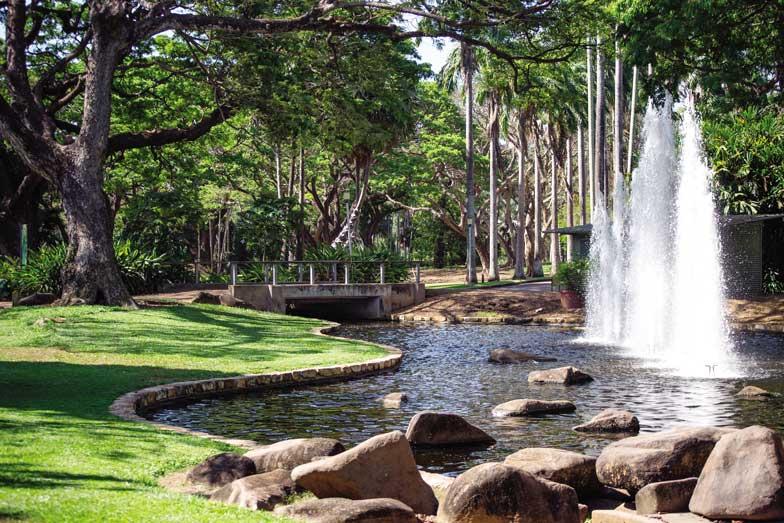 George Brown Darwin Botanical Gardens. Image Tourism NT Shaana McNaught