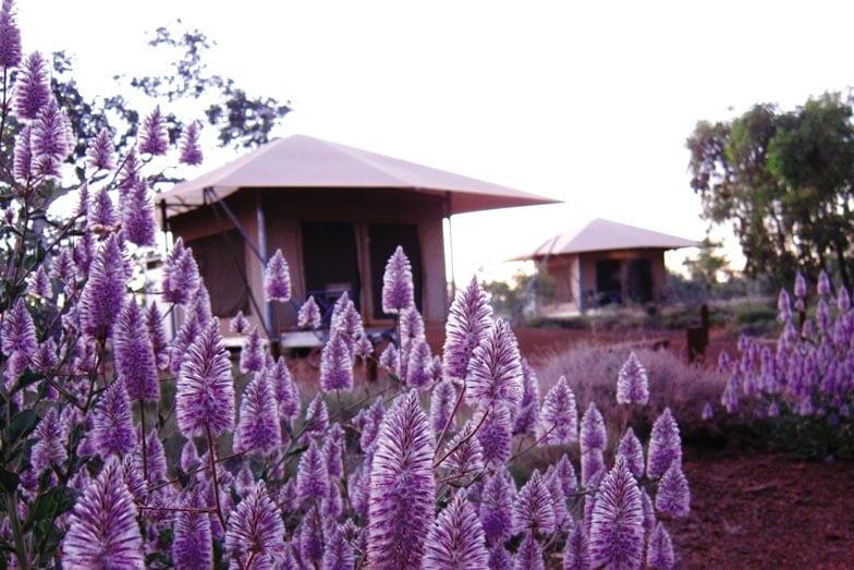Karijini Eco Retreat in Western Australia