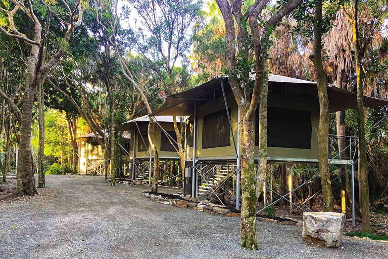 New treehouse glamping tents at Tiona Holiday Park near Forster. Image Elisa Elwin
