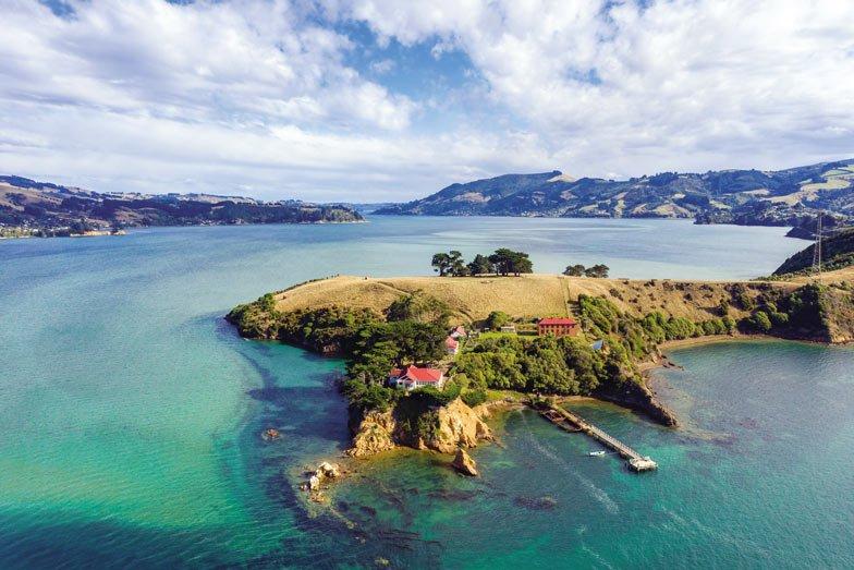 Quarantine Island in Dunedin
