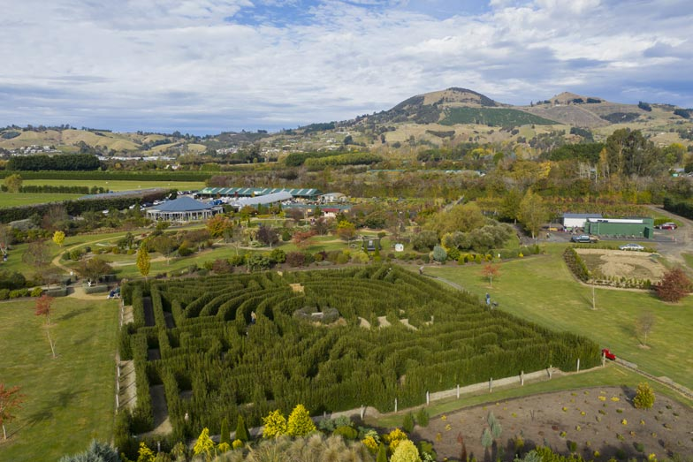 The maze at Wals Plant and Funland in Dunedin