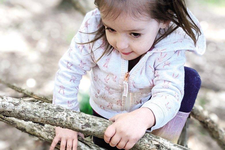 Tree climbing at a Bush Balance playgroup