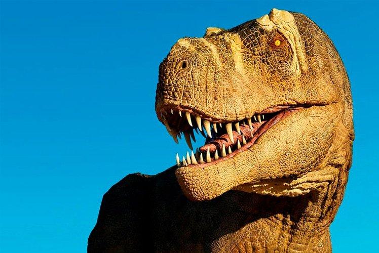 Tyrannosaurus rex belonged to dinosaur group called theropods Shutterstock