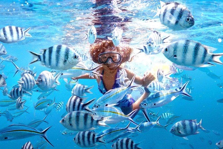 Snorkelling CREDIT Tourism Fiji