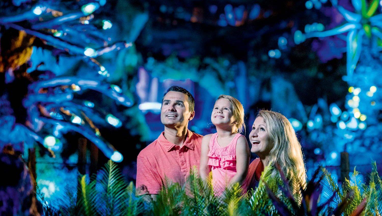 Pandora The World of Avatar at Disneys Animal Kingdom at World Disney World Resort in Florida Image Kent Phillips